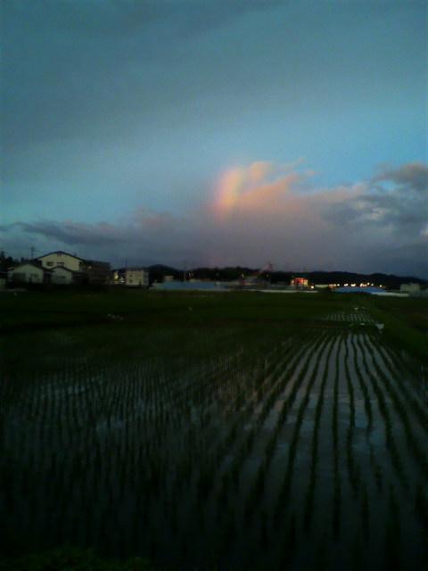 台風接客中の虹